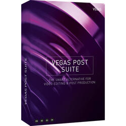 Vegas POST Suite, Licenta Electronica